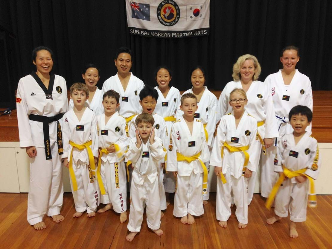 Kenmore Yellow (9th Gup) belts