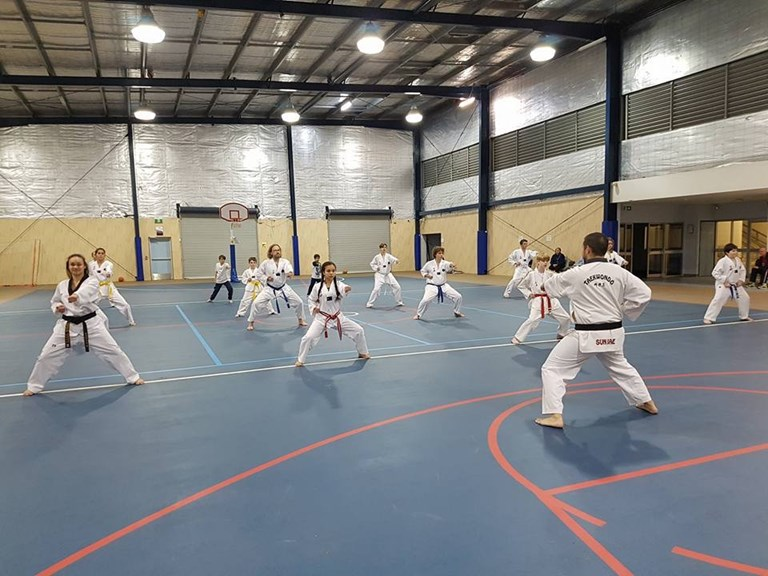 Martial Arts Taekwondo Jamboree Heights